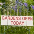 CLIFTON OPEN GARDENS WEEKEND